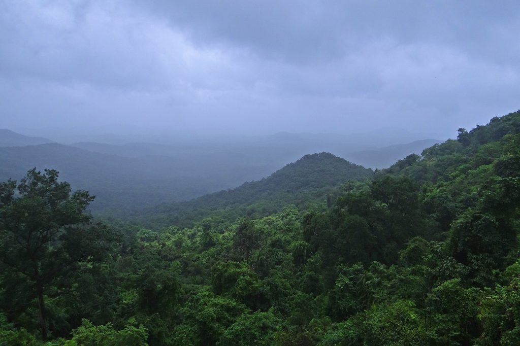Western ghats biodiversity hotspot