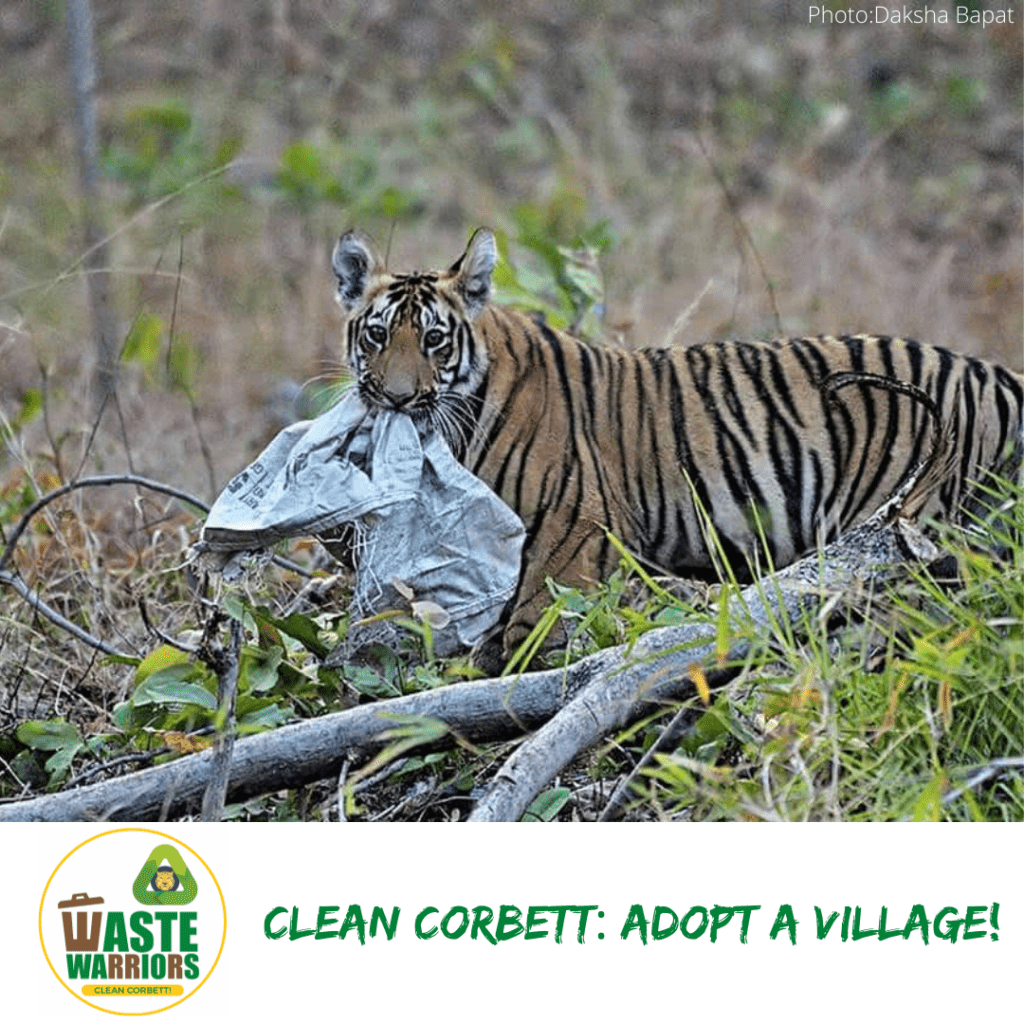 Clean Corbett Initiative