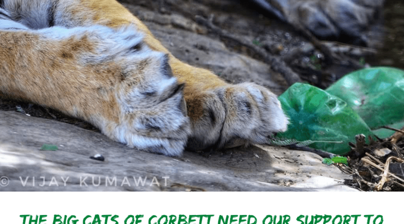 Clean Corbett Initiative by Waste Warriors